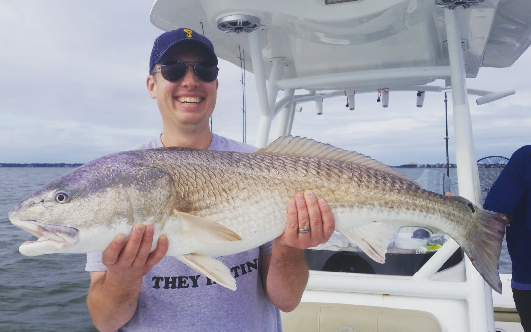 Charleston SC Charter fishing report for November