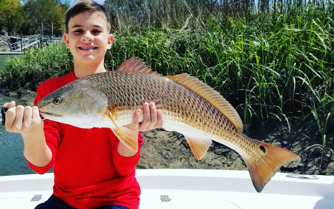 Charleston Fishing Report April 2018