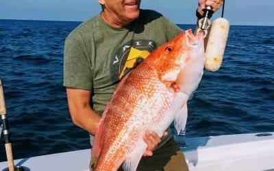 Charleston Charter fishing forecast for November
