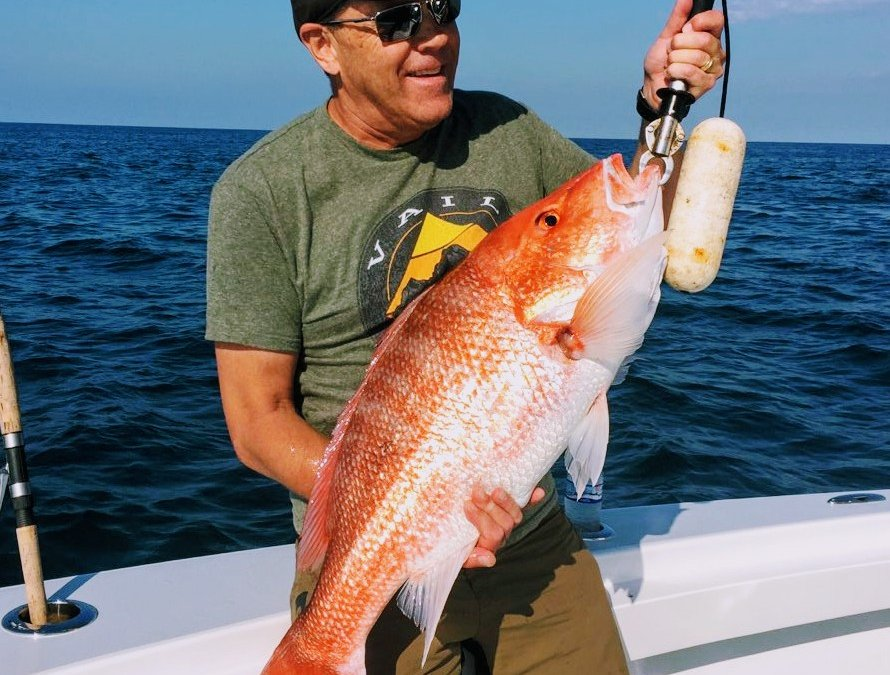 Charleston Charter fishing forecast for November